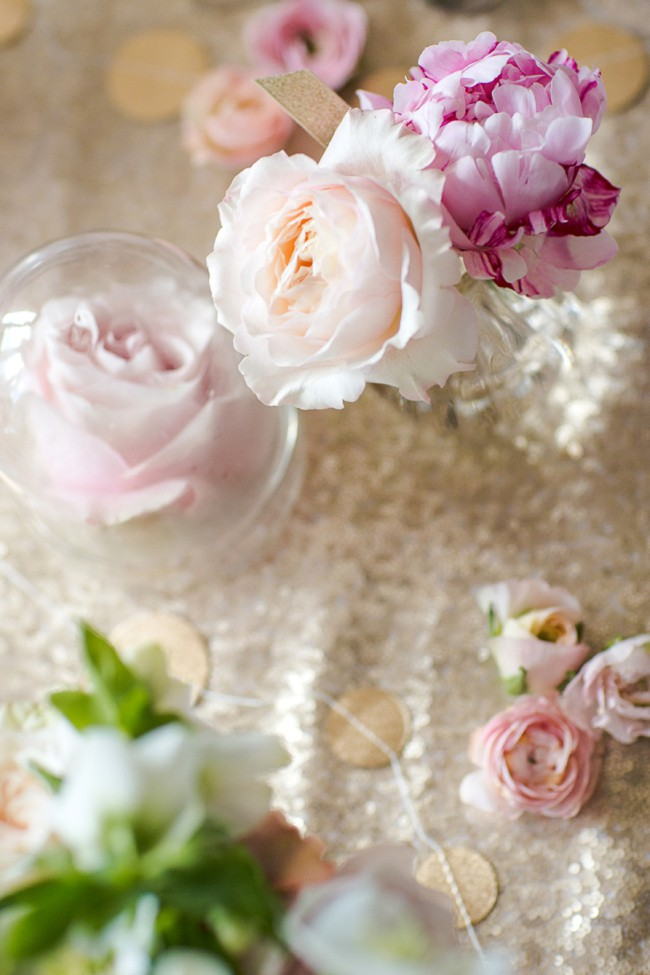 Flower editorial photography by Marianne Taylor