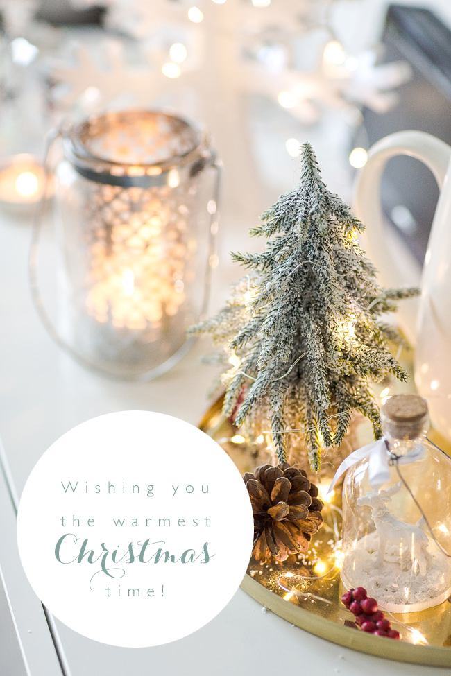 Merry Christmas from Marianne Taylor Photography!