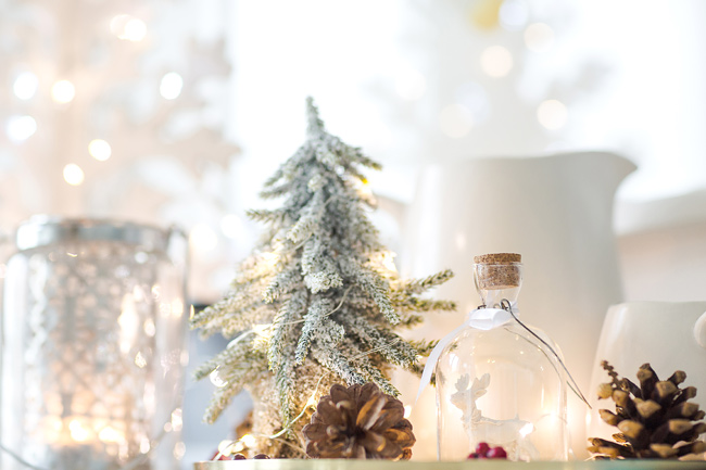 Simple Christmas decorations with twinkly lights and snow.