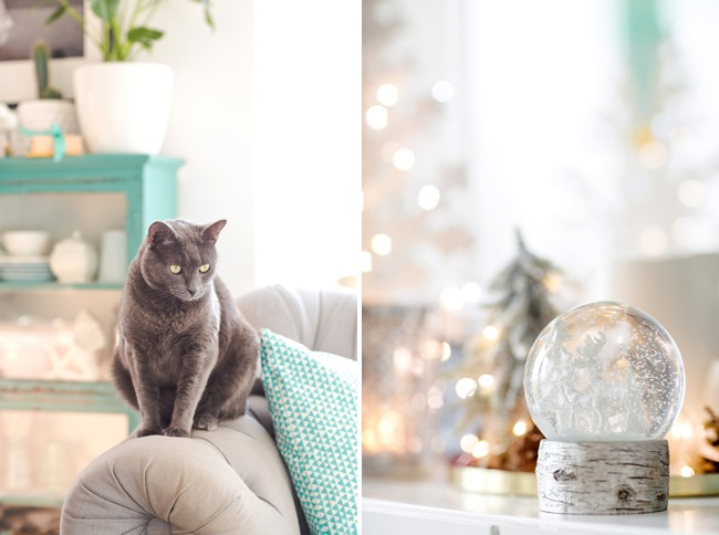 Simple Christmas decorations with twinkly lights and snow. (Cat optional).